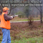 Everything You Need to Know About Quail Hunting at Crooked Oaks